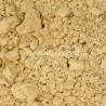 Shiitake fungo bio in polvere Europa - 100g